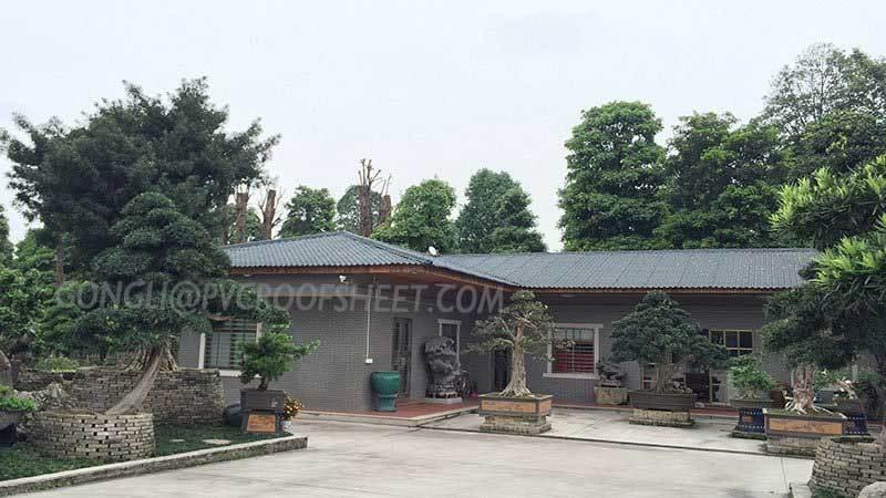 Fujian area