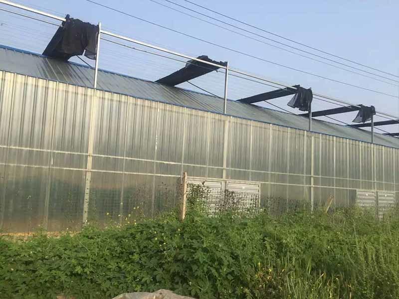 Gongli Latest transparent fiberglass sheet manufacturers for car shed-3